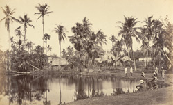 Native village [Bengal]